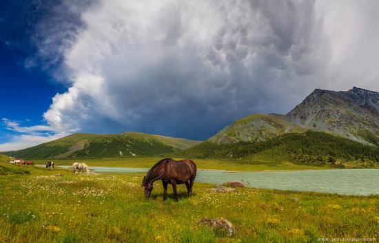 Lake Akkem, Altai Republic, Russia, photo 10