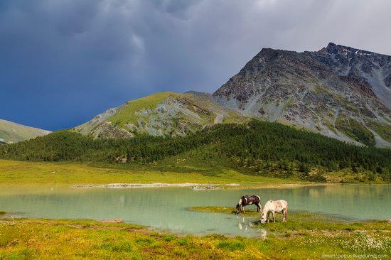 Lake Akkem, Altai Republic, Russia, photo 4