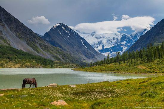 Lake Akkem, Altai Republic, Russia, photo 5