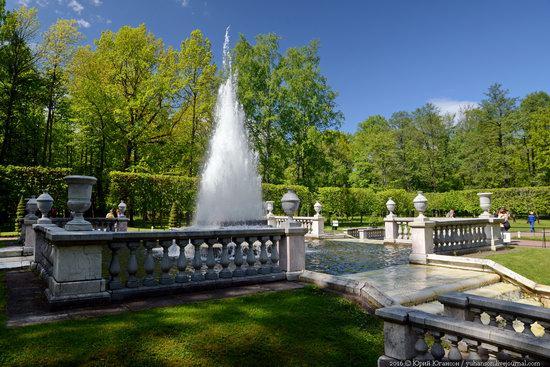 Spring in Peterhof museum, St. Petersburg, Russia, photo 11