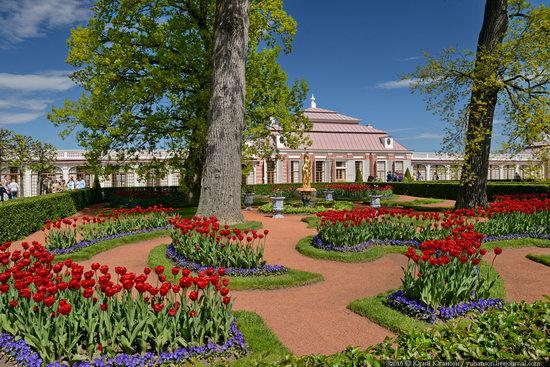 Spring in Peterhof museum, St. Petersburg, Russia, photo 14