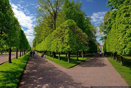 Spring in Peterhof museum, St. Petersburg, Russia, photo 16