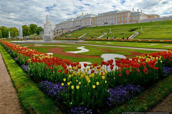 Spring in Peterhof museum, St. Petersburg, Russia, photo 22