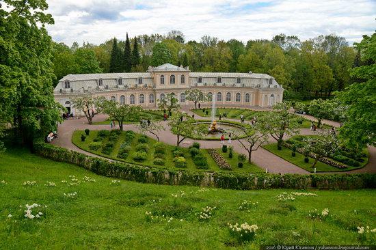 Spring in Peterhof museum, St. Petersburg, Russia, photo 23