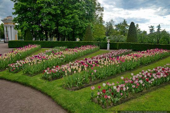 Spring in Peterhof museum, St. Petersburg, Russia, photo 28