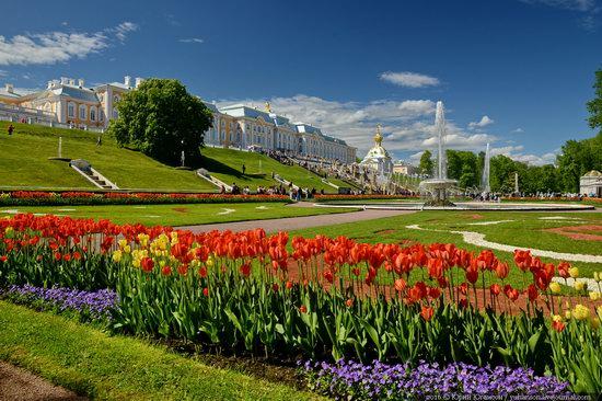 Spring in Peterhof museum, St. Petersburg, Russia, photo 6