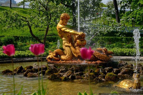 Spring in Peterhof museum, St. Petersburg, Russia, photo 7