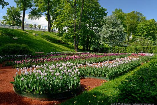 Spring in Peterhof museum, St. Petersburg, Russia, photo 8