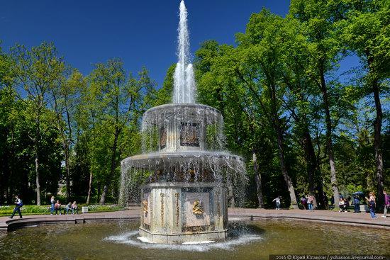Spring in Peterhof museum, St. Petersburg, Russia, photo 9