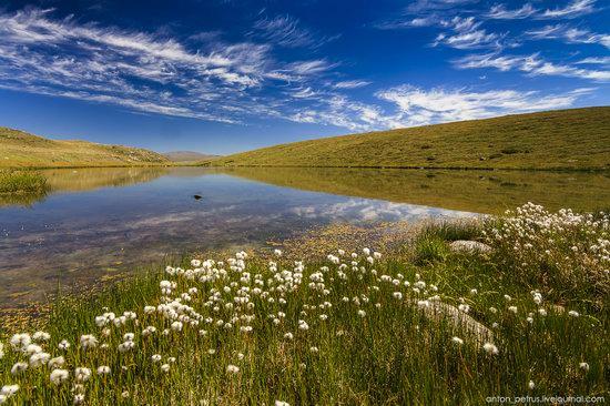 Plateau Ukok, Altai Republic, Russia, photo 3