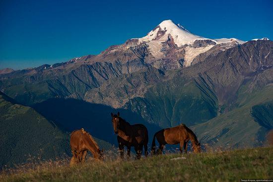 Climbing Stolovaya Mountain, Caucasus, Russia, photo 2