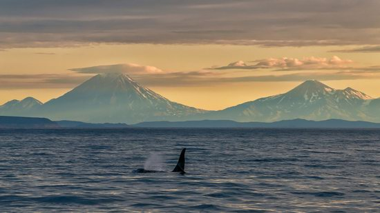 The eastern coast of Kamchatka, Russia, photo 10