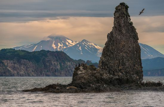 The eastern coast of Kamchatka, Russia, photo 12