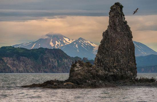 The eastern coast of Kamchatka, Russia, photo 12