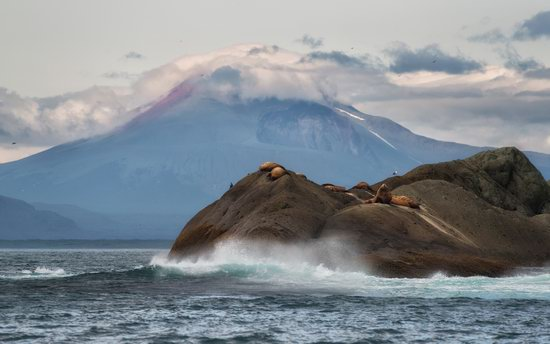 The eastern coast of Kamchatka, Russia, photo 14