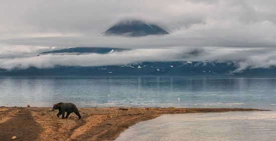The eastern coast of Kamchatka, Russia, photo 15