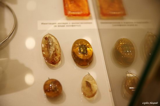 Amber Museum in Kaliningrad, Russia, photo 21