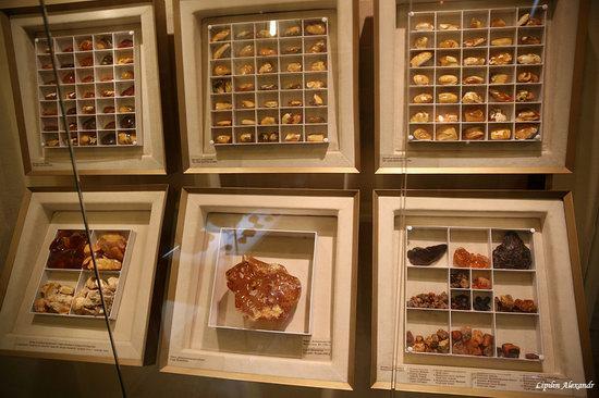 Amber Museum in Kaliningrad, Russia, photo 3