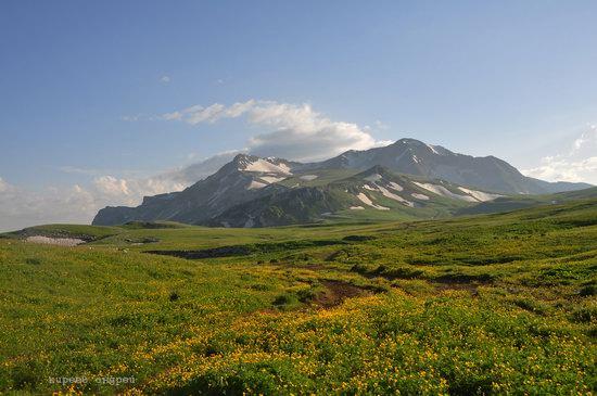Lago-Naki Plateau, Caucasus, Russia, photo 1