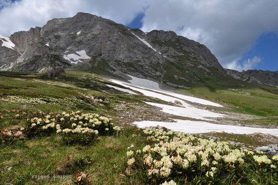 Lago-Naki Plateau, Caucasus, Russia, photo 15