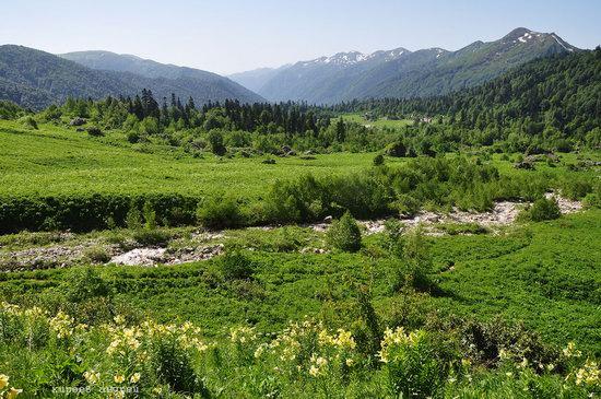 Lago-Naki Plateau, Caucasus, Russia, photo 18