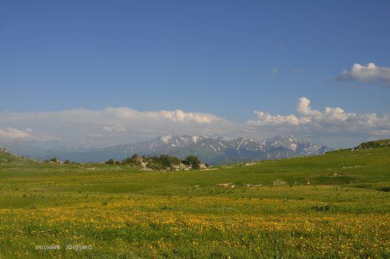 Lago-Naki Plateau, Caucasus, Russia, photo 26