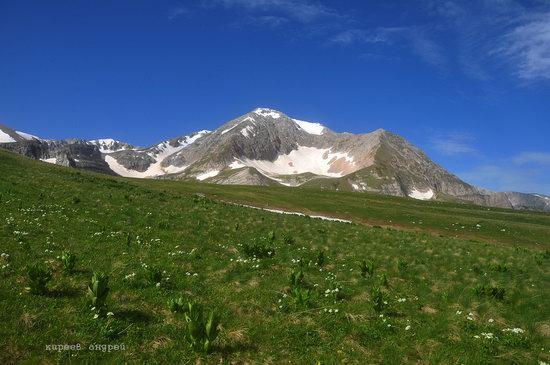 Lago-Naki Plateau, Caucasus, Russia, photo 5