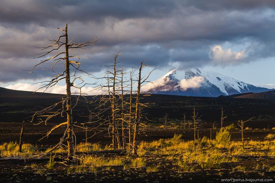 The lava fields of Tolbachik, Kamchatka, Russia, photo 11