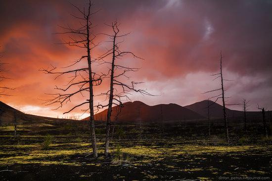 The lava fields of Tolbachik, Kamchatka, Russia, photo 13