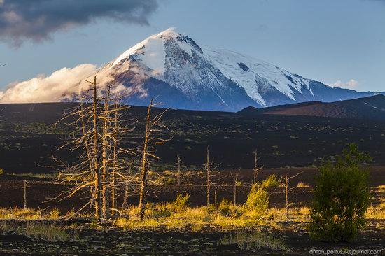 The lava fields of Tolbachik, Kamchatka, Russia, photo 9