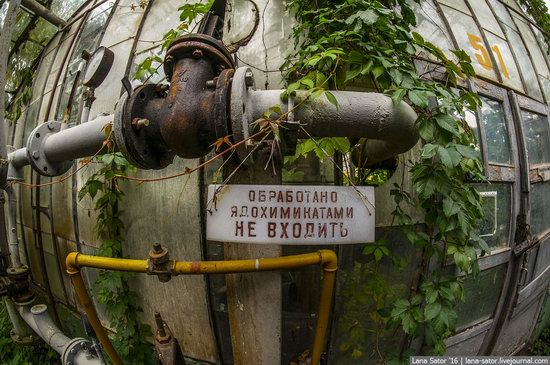 Abandoned greenhouse complex near Moscow, Russia, photo 1