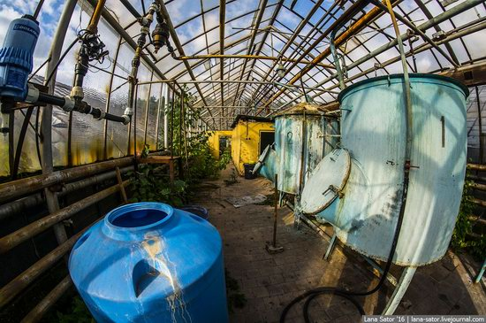 Abandoned greenhouse complex near Moscow, Russia, photo 12