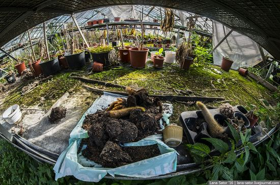 Abandoned greenhouse complex near Moscow, Russia, photo 13
