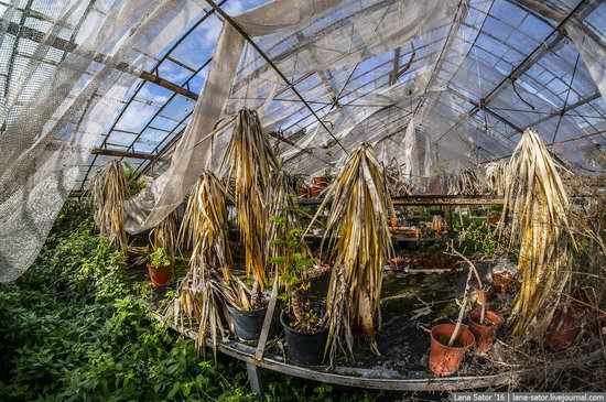 Abandoned greenhouse complex near Moscow, Russia, photo 14