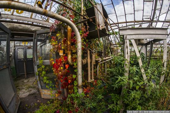 Abandoned greenhouse complex near Moscow, Russia, photo 16