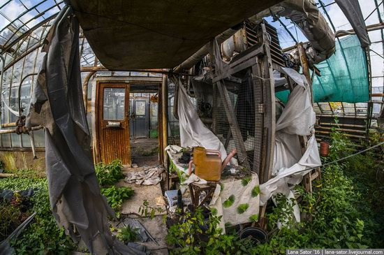 Abandoned greenhouse complex near Moscow, Russia, photo 17
