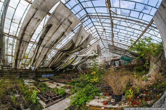 Abandoned greenhouse complex near Moscow, Russia, photo 18