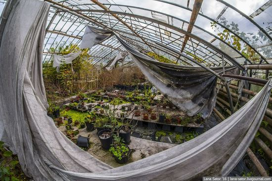 Abandoned greenhouse complex near Moscow, Russia, photo 19