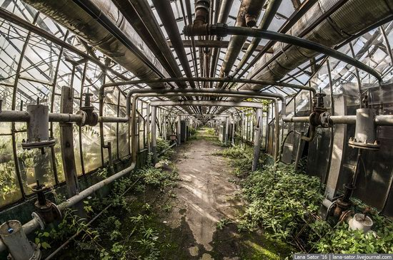 Abandoned greenhouse complex near Moscow, Russia, photo 2