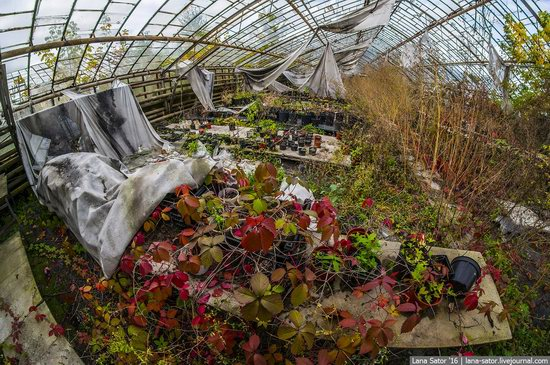 Abandoned greenhouse complex near Moscow, Russia, photo 21
