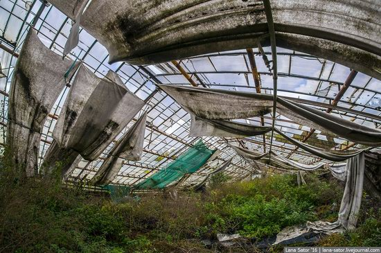 Abandoned greenhouse complex near Moscow, Russia, photo 23