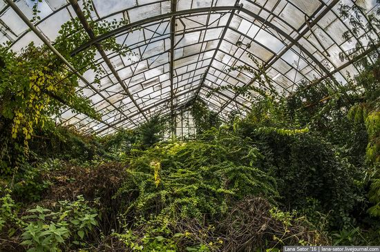Abandoned greenhouse complex near Moscow, Russia, photo 25