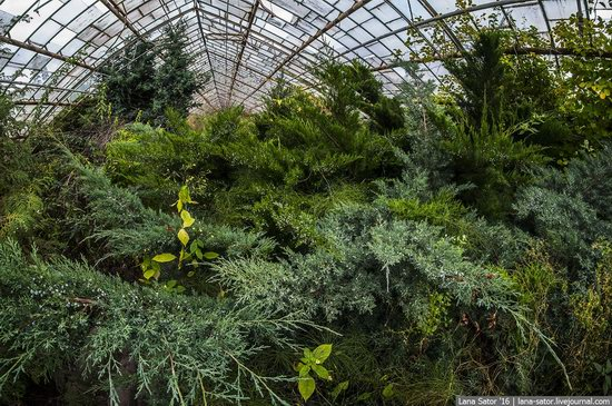 Abandoned greenhouse complex near Moscow, Russia, photo 26