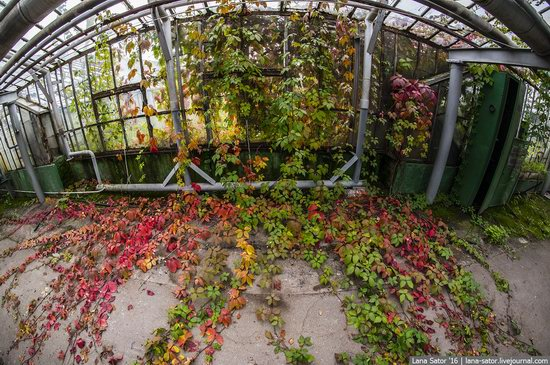 Abandoned greenhouse complex near Moscow, Russia, photo 27