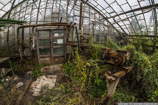 Abandoned greenhouse complex near Moscow, Russia, photo 28
