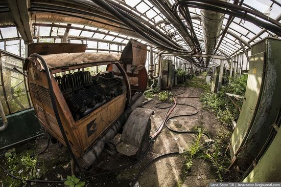 Abandoned greenhouse complex near Moscow, Russia, photo 4