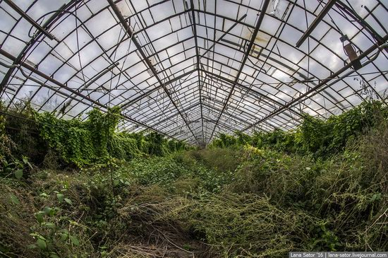 Abandoned greenhouse complex near Moscow, Russia, photo 5