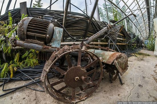 Abandoned greenhouse complex near Moscow, Russia, photo 6