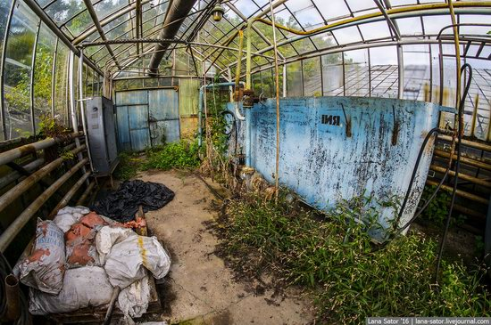 Abandoned greenhouse complex near Moscow, Russia, photo 7