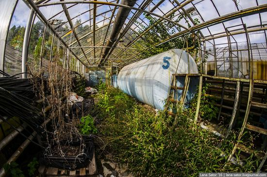 Abandoned greenhouse complex near Moscow, Russia, photo 8